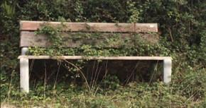 rural-ribad