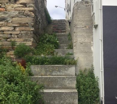 220817 foto escaleira rúa do Horreo