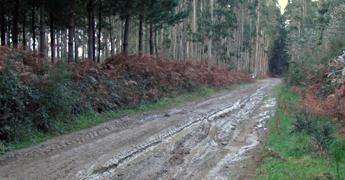 Pide o BNG que o Concello de Foz amañe a pista de Trasmonte aos montes veciñais en Nois