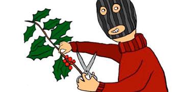 Adega pide colaboración para facermos un Nadal 2010 máis verde e bio-diverso