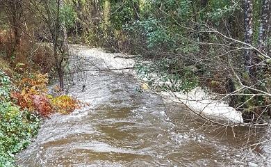 O Concello de Cervo confirma que o vertido no río Xunco foi provocado polo arrastre de material das balsas de decantación da mina de caolín
