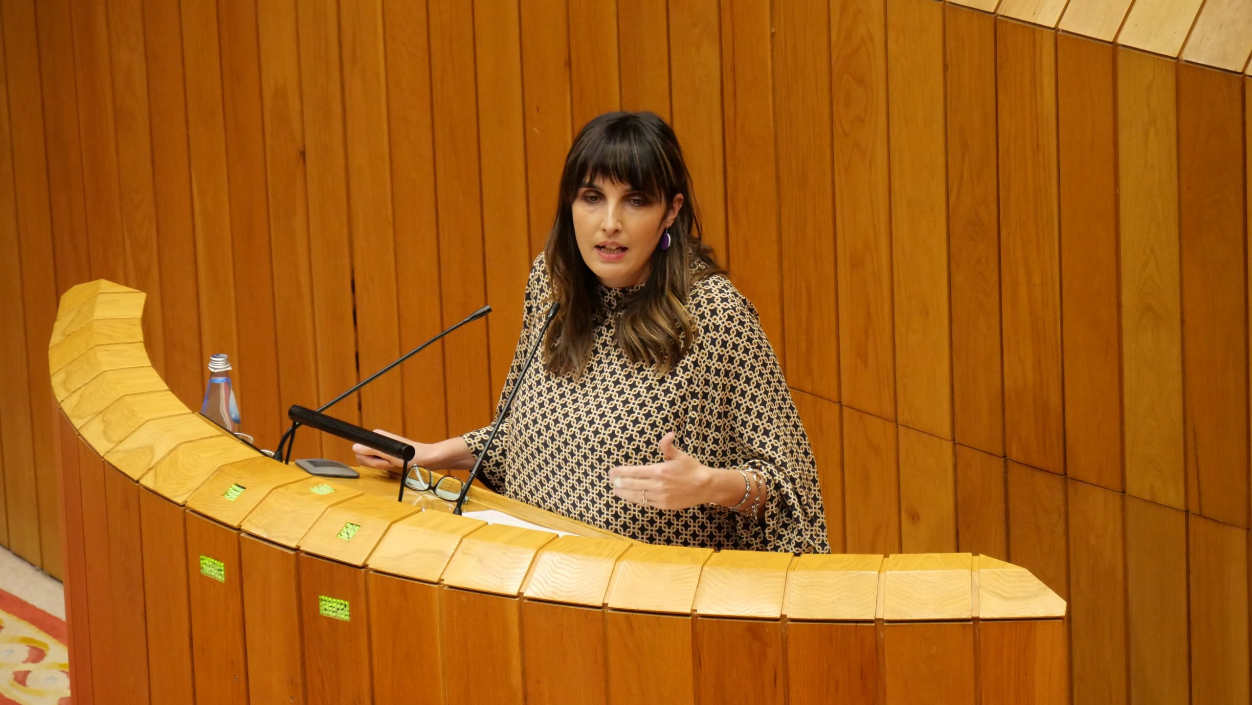 O BNG recrimina á Xunta que anuncie unha moratoria para o eucalipto que non inclúe no Plan Forestal votado no Parlamento