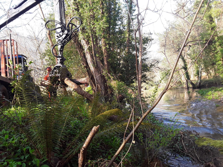 A Xunta inicia traballos de conservación e limpeza en treitos interurbanos de tres ríos ao seu paso polo Concello de Mondoñedo