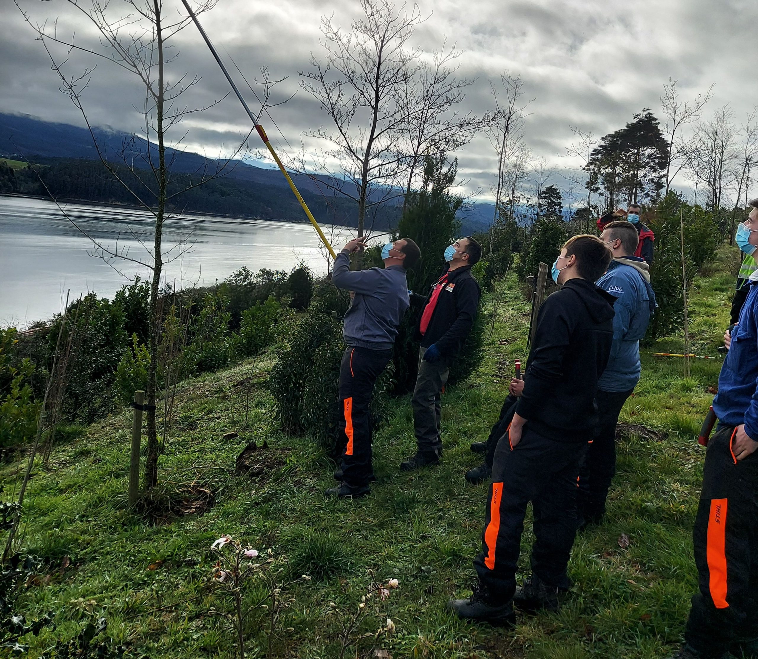Alumnos do Centro de Formación e Experimentación Agroforestal Pedro Murias dependente da Xunta realizan prácticas nunha parcela de 23 hectáreas preto da ría de Ribadeo