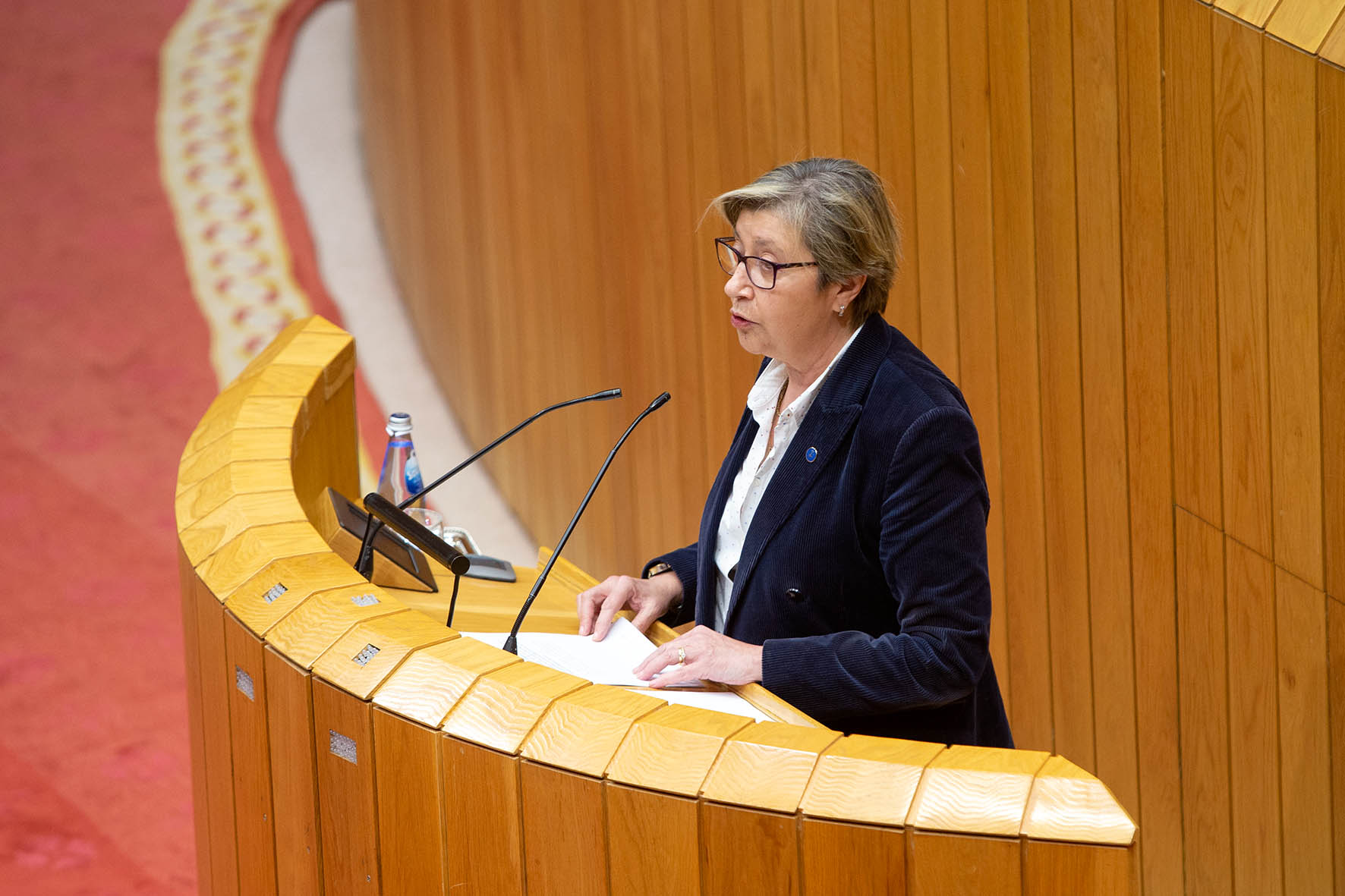 Isabel Rodríguez anuncia que o Goberno inviste 873.000 euros nas balizas detectoras para mellorar a seguridade viaria na A-8 ao seu paso polo Fiouco