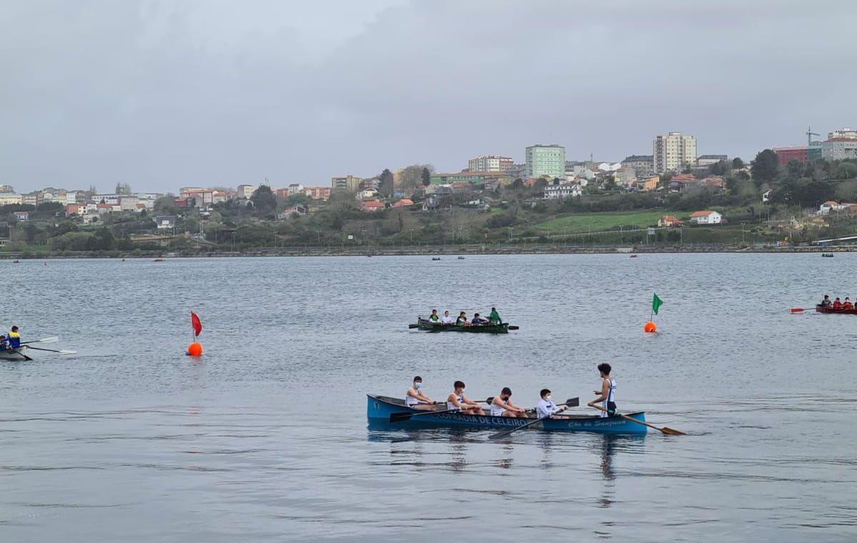Excelente participación do Club de Remo Celeiro na regata de Narón
