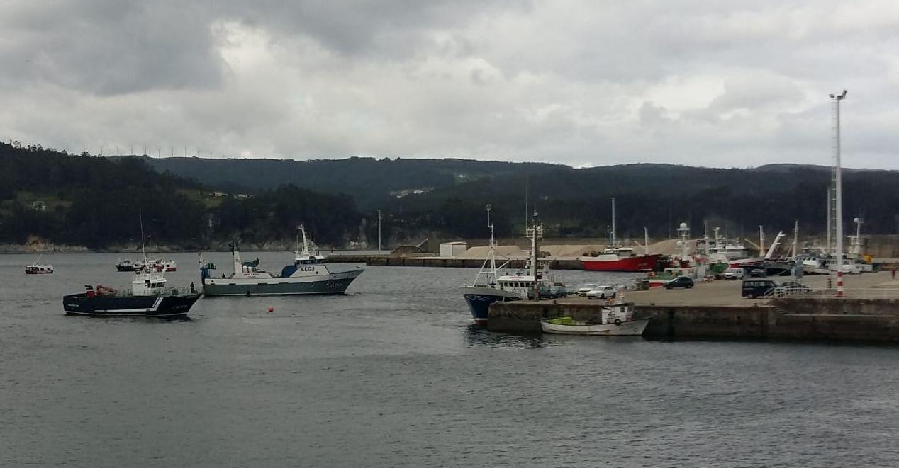 O grupo de goberno de Viveiro apoia as reivindicacións da flota de baixura en contra do novo regulamento de control da UE