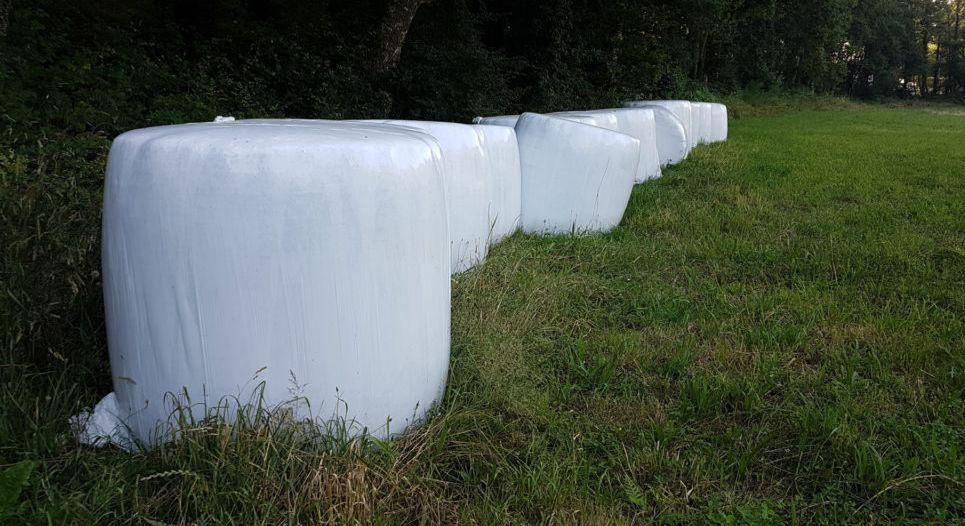 O Concello de Ribadeo iniciará o vindeiro luns, 8 de marzo, a campaña de recollida porta a porta dos plásticos agrícolas