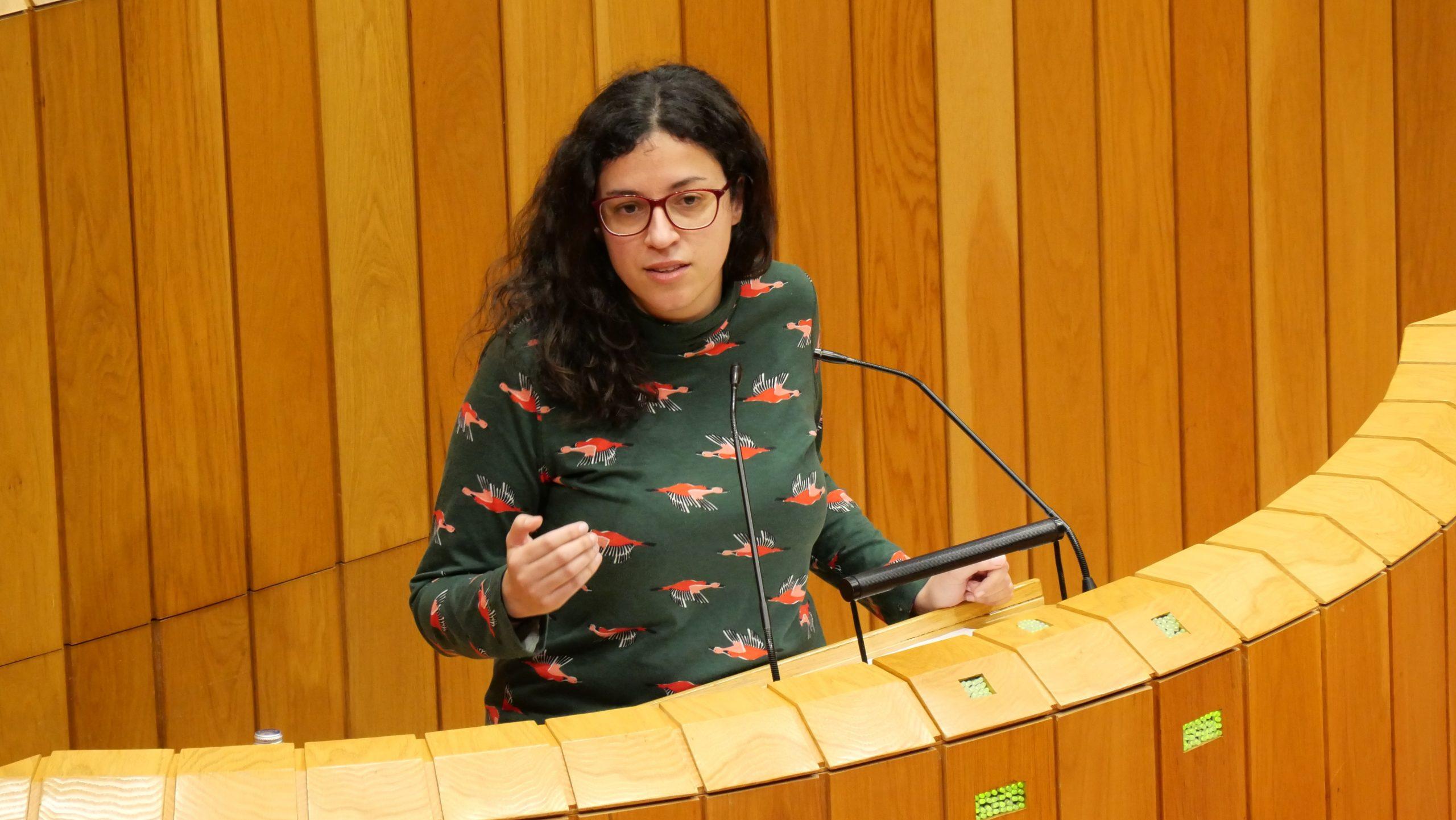 """O BNG leva ao próximo pleno do Parlamento unha alternativa ao modelo eólico do PP que beneficia a Galiza e non """"a 4 empresas"""""""