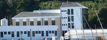 A Xunta investiu arredor de 700.000€ en estudos sobre a coquina para aumentar a súa presenza nos bancos marisqueiros
