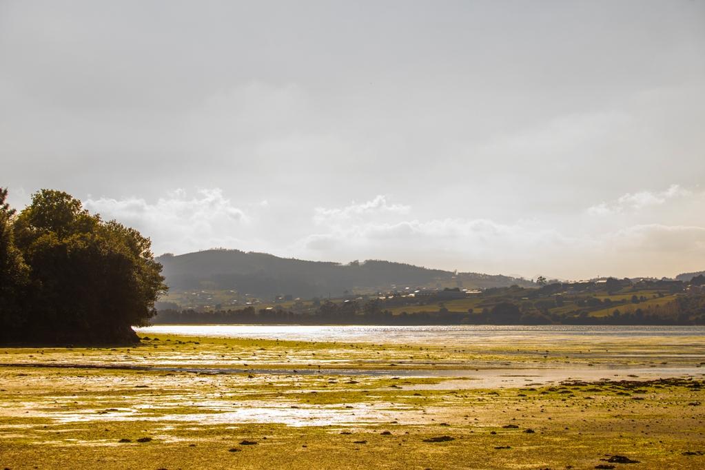 Máis propostas para o verán barreirense, rutas ambientais guiadas pola marxe da Ría do Masma