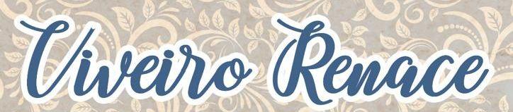 Chega 'Viveiro Renace' para recuperar a esencia da Feira Rnacentista e axudar ao sector da hostalería local