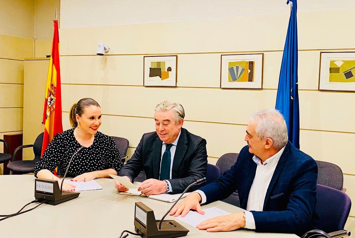 """Os senadores populares instan ao Goberno a """"corrixir o agravio que sufre a provincia"""" pola falta de conexión con Madrid vía ferroviaria"""