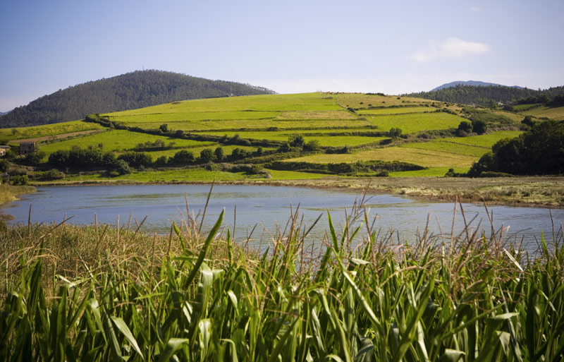 A Xunta reparte case 260.000 euros entre 13 concellos das reservas da biosfera da provincia para apoialos na mellora do patrimonio natural