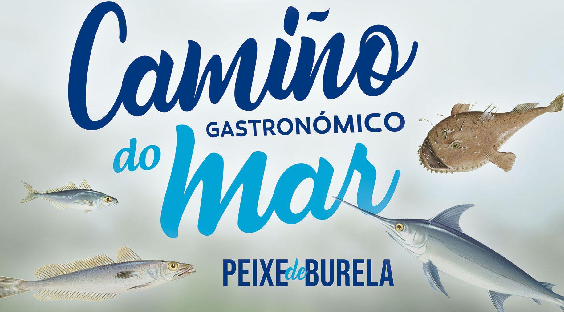 """Este venres preséntase en Burela a segunda edición do """"Camiño Gastronómico do Mar"""""""