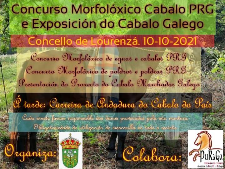Domingo con concursos morfolóxicos e exposición de cabalos de pura raza galega en Lourenzá